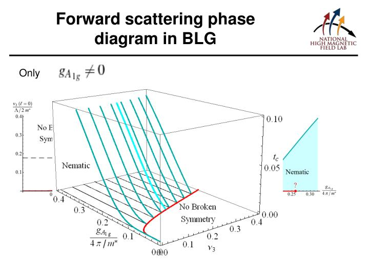 Forward scattering phase diagram in BLG