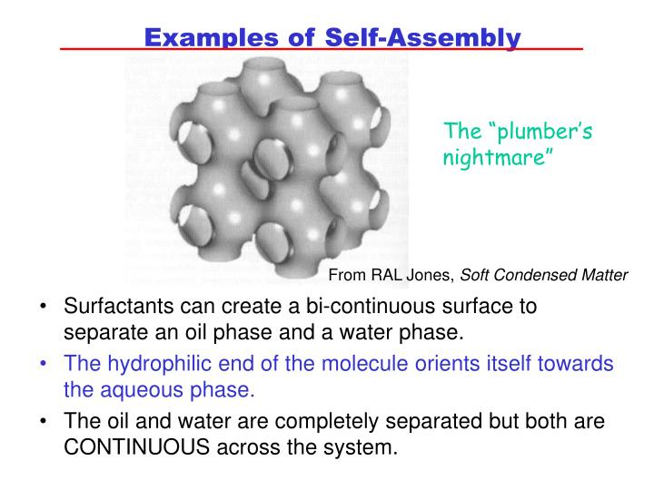 Examples of Self-Assembly