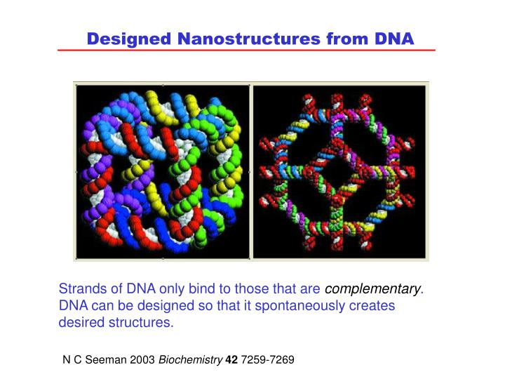 Designed Nanostructures from DNA