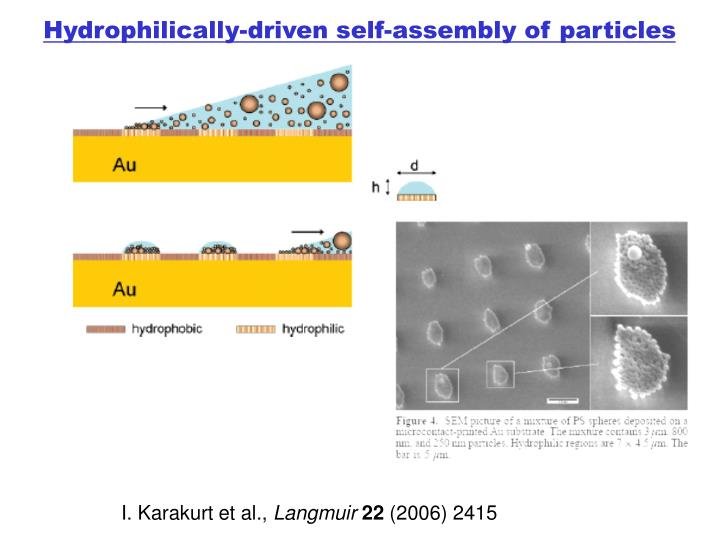 Hydrophilically-driven self-assembly of particles