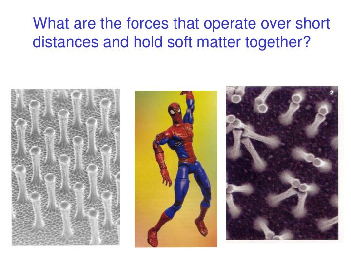 What are the forces that operate over short distances and hold soft matter together?