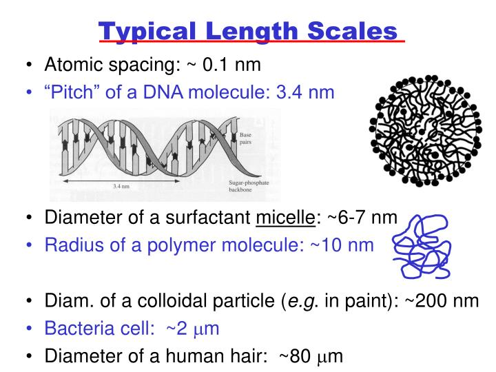 Typical Length Scales