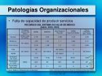 patolog as organizacionales2