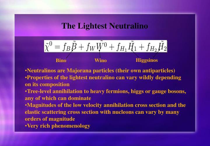 The Lightest Neutralino