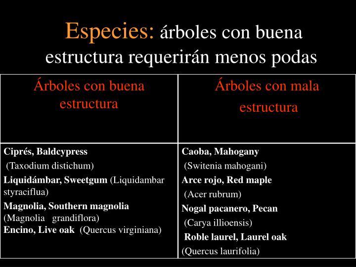 Especies: