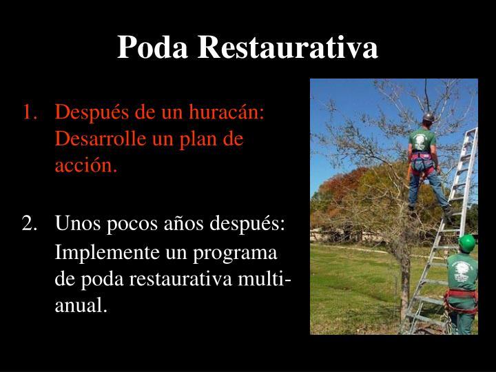 Poda Restaurativa