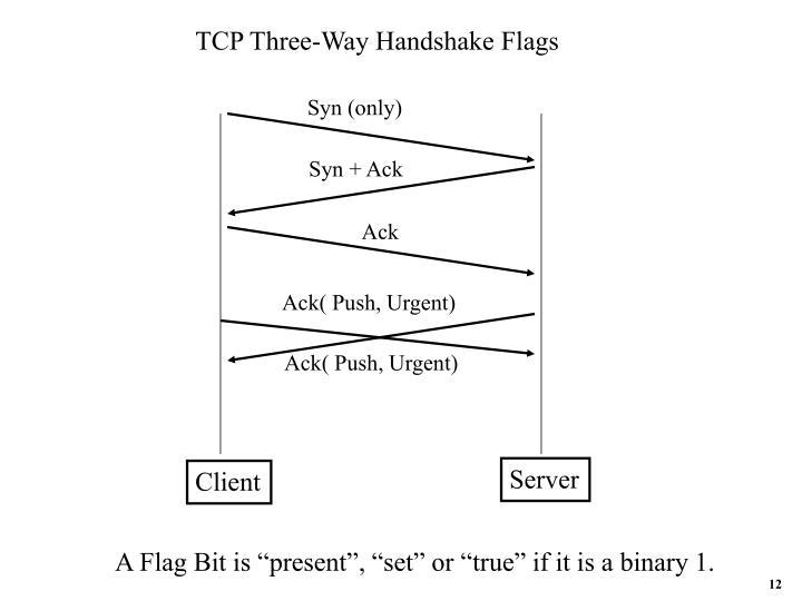 TCP Three-Way Handshake Flags