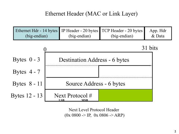 Ethernet Header (MAC or Link Layer)