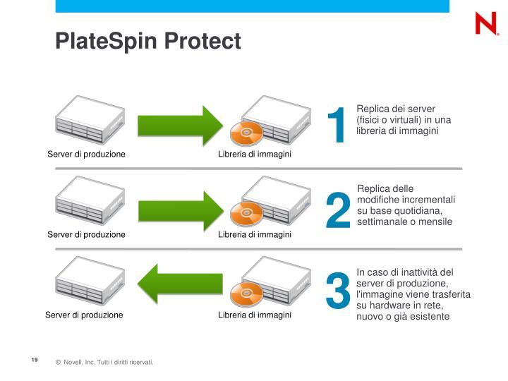 PlateSpin Protect