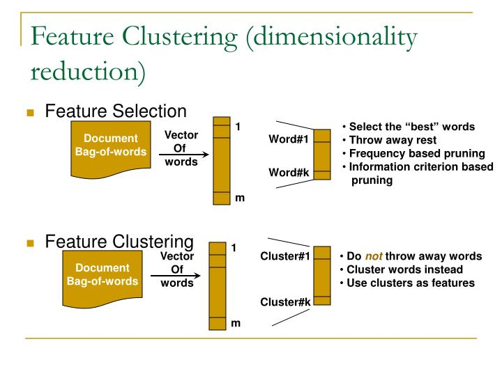 Feature Clustering (dimensionality reduction)