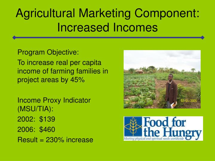 Agricultural Marketing Component: Increased Incomes