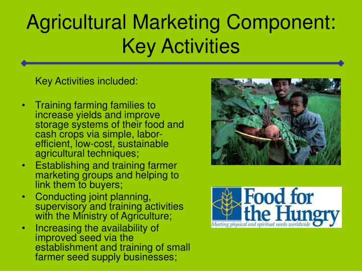 Agricultural Marketing Component: Key Activities