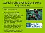 agricultural marketing component key activities