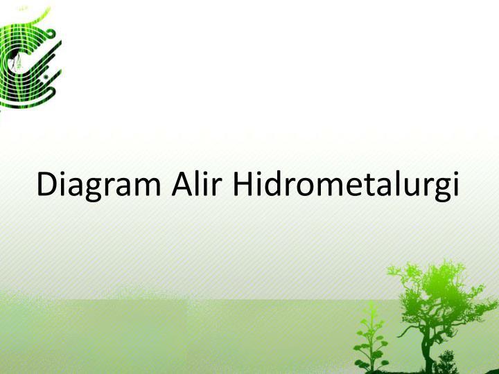Diagram Alir Hidrometalurgi