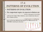 17 4 patterns of evolution