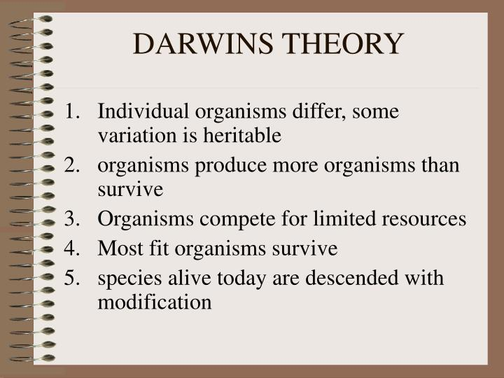 DARWINS THEORY