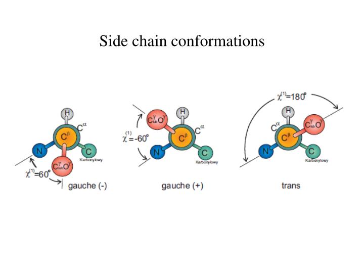 Side chain conformations