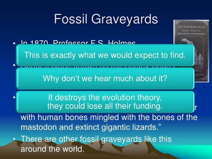 Fossil Graveyards