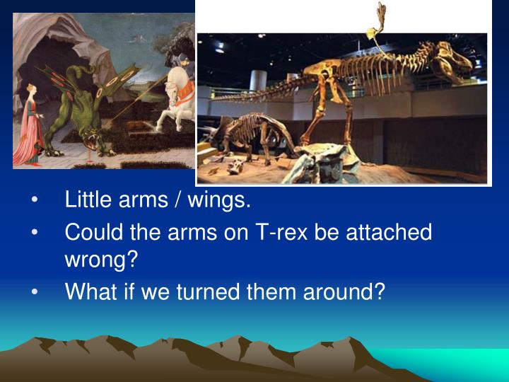 Little arms / wings.