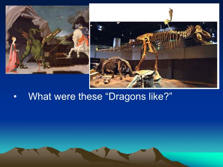 "What were these ""Dragons like?"""