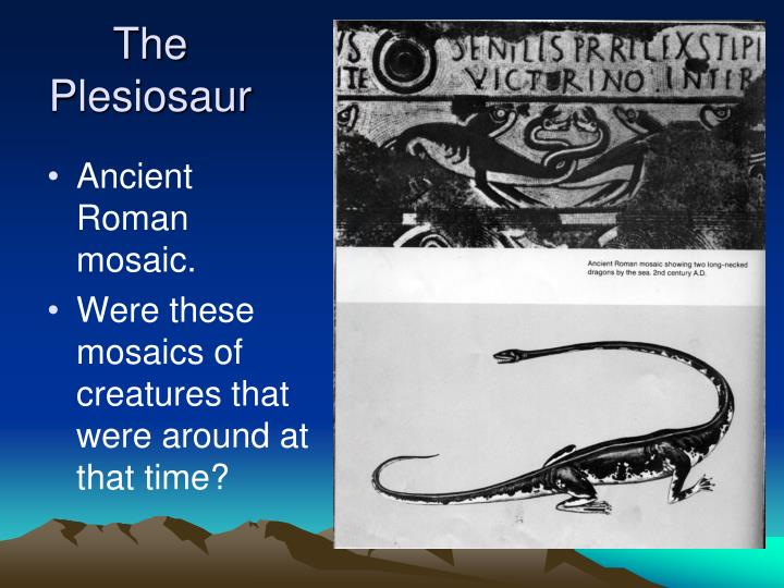 The Plesiosaur