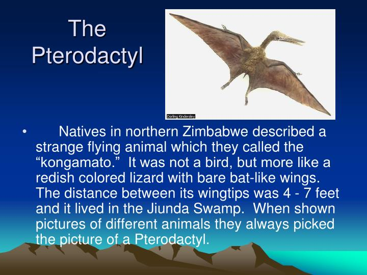 The Pterodactyl