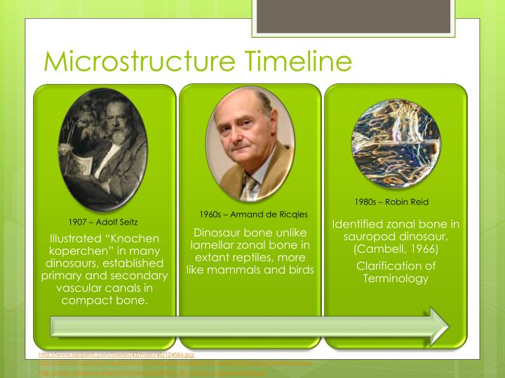 Microstructure timeline