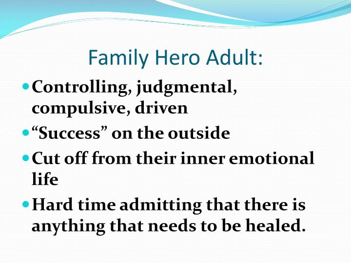 Family Hero Adult: