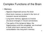 complex functions of the brain2