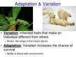 adaptation variation