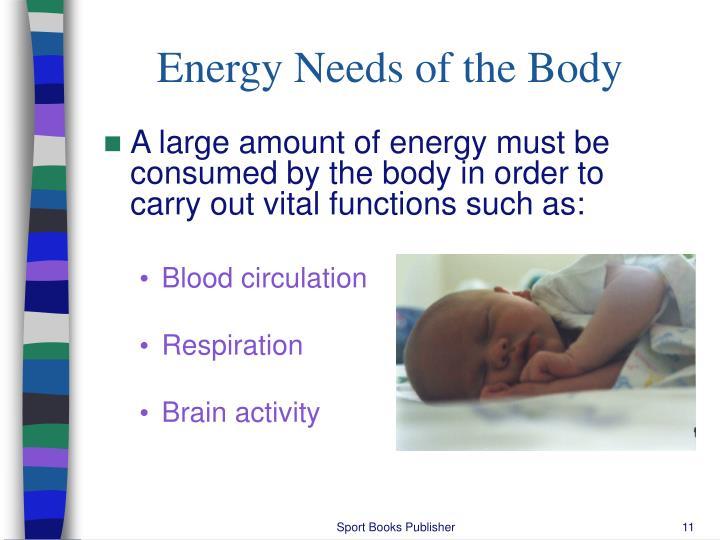 Energy Needs of the Body