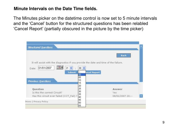 Minute Intervals on the Date Time fields.