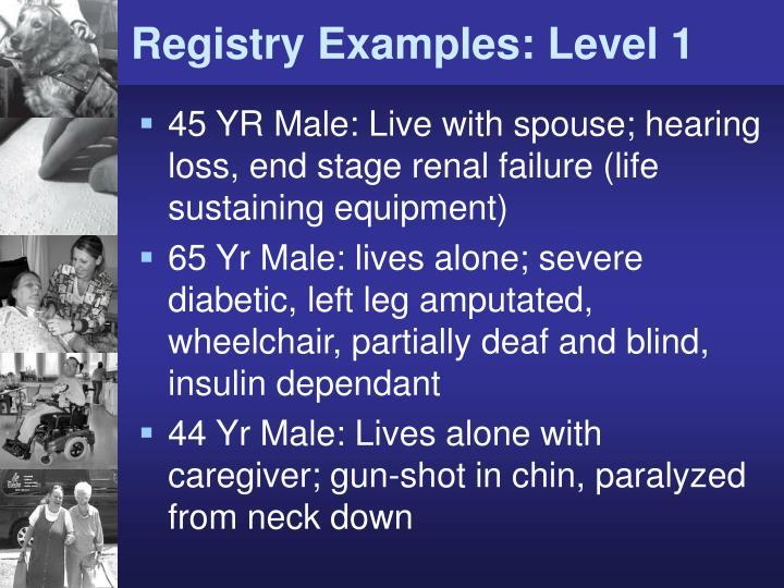 Registry Examples: Level 1