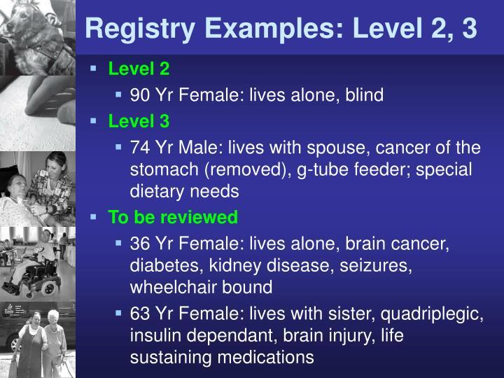 Registry Examples: Level 2, 3