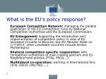 what is the eu s policy response