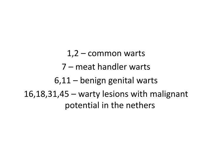 1,2 – common warts