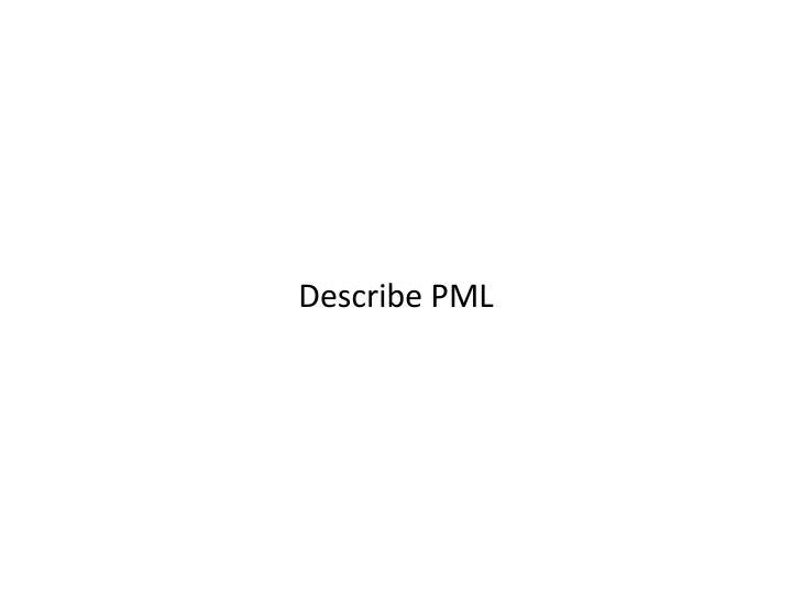 Describe PML