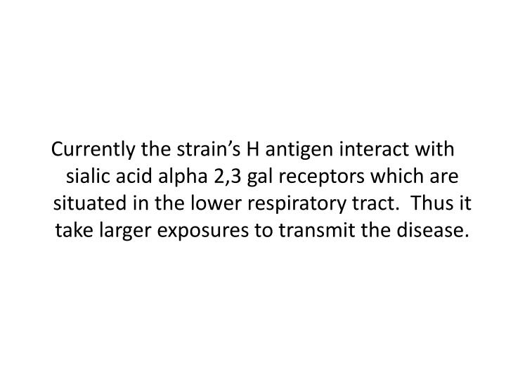 Currently the strain's H antigen interact with