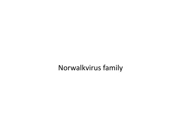 Norwalkvirus