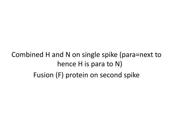 Combined H and N on single spike (