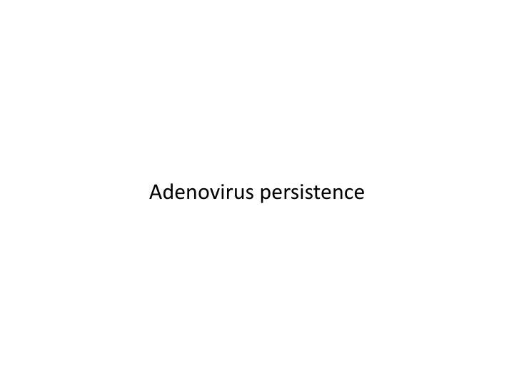 Adenovirus persistence