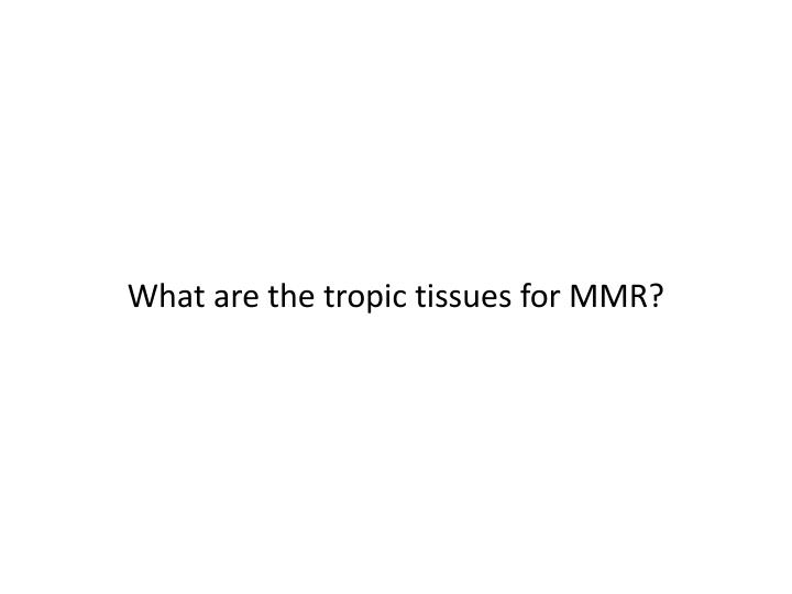 What are the tropic tissues for MMR?