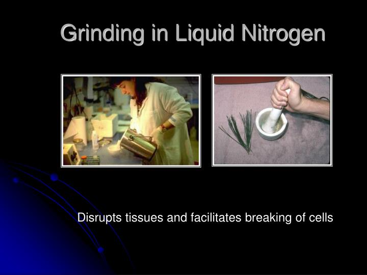 Grinding in Liquid Nitrogen