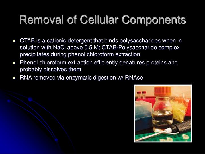 Removal of Cellular Components