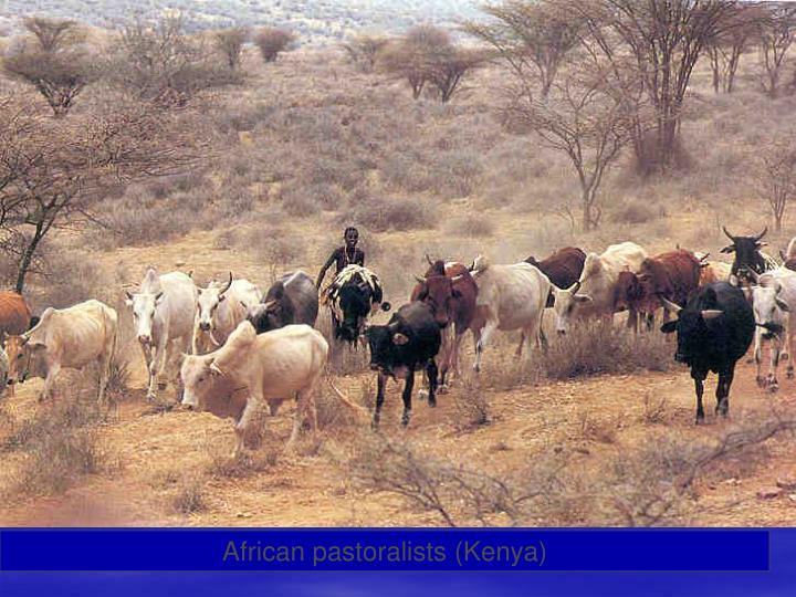 African pastoralists (Kenya)