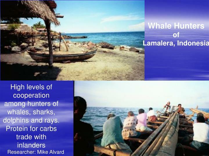 Whale Hunters