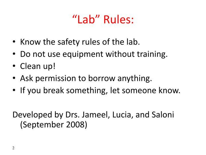 """""""Lab"""""""