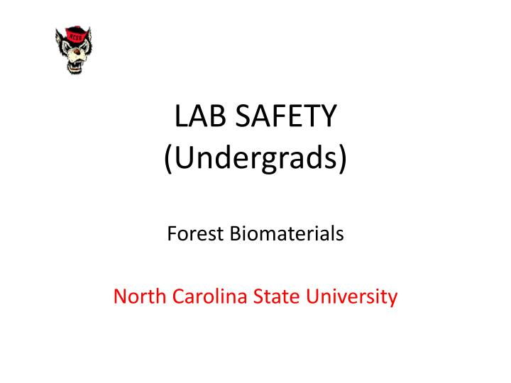 Lab safety undergrads forest biomaterials