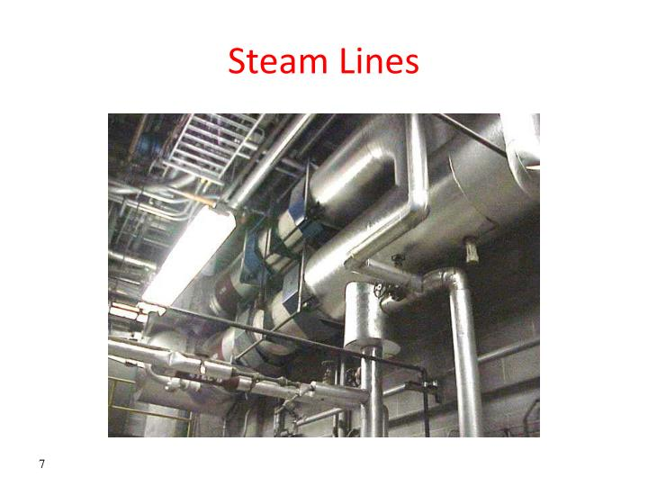 Steam Lines
