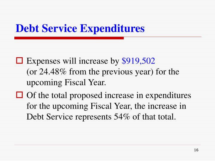 Debt Service Expenditures